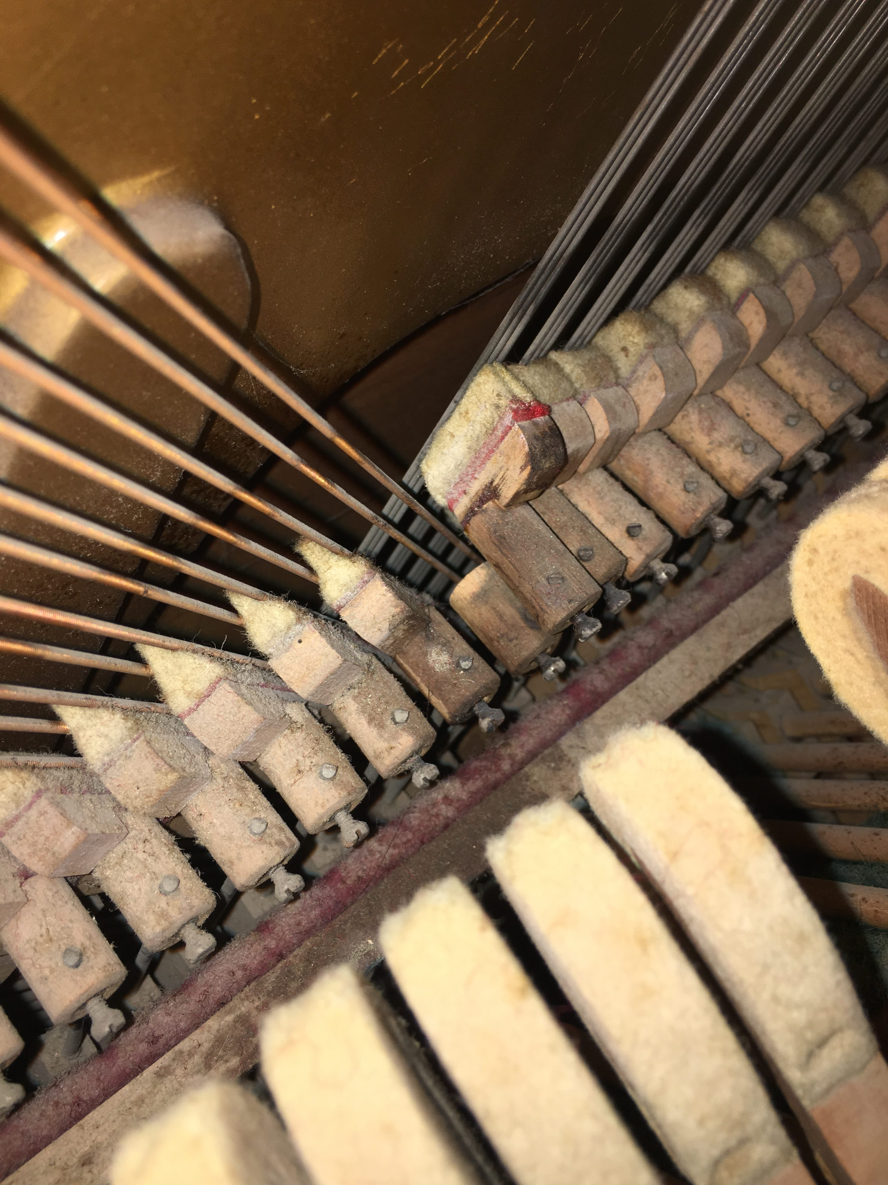 Piano services cleaning